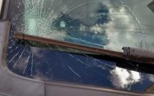 Pé de manga no canteiro central da avenida, causa prejuizo a motorista