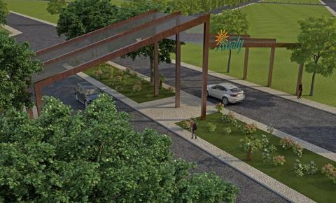Vereador Anilson Prego pede sinalização de transito e mudas de árvores frutíferas
